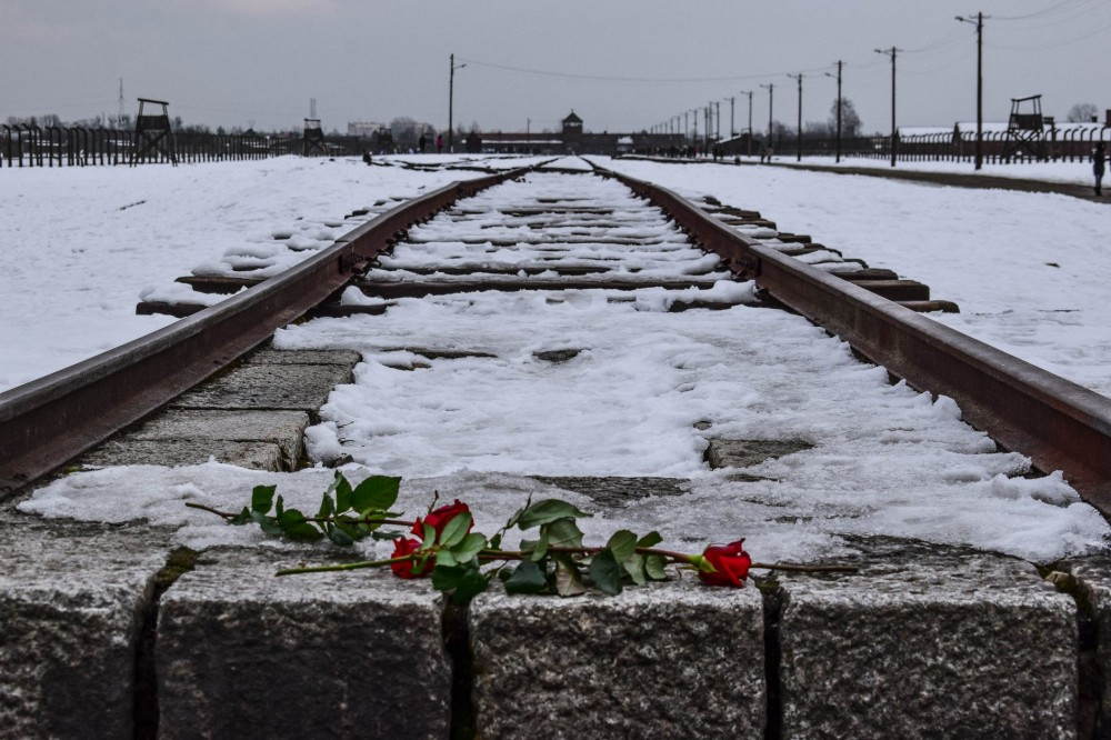 red roses on a railway covered with snow